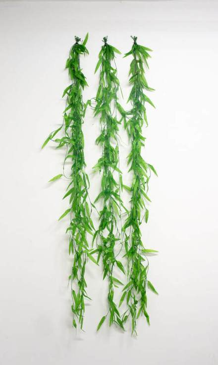 plants11