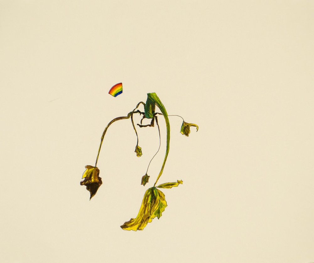 dying+plant+and+rainbow_drawing